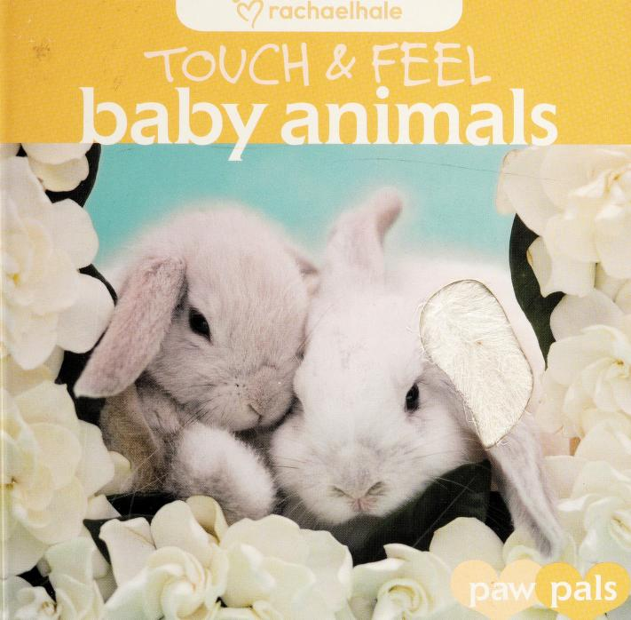 Baby animals by Rachael Hale